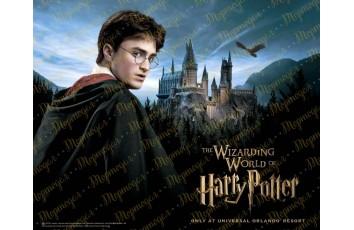 Съедобная картинка Гарри Поттер №1