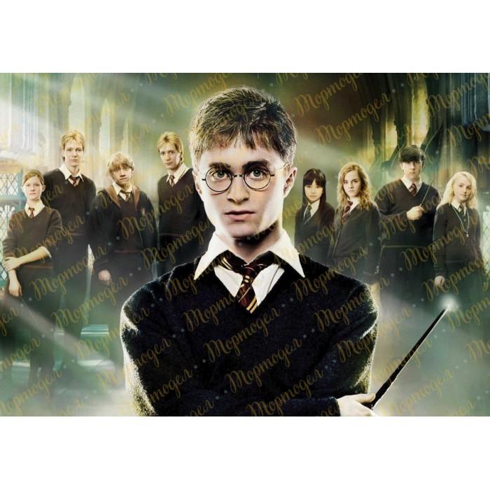 Съедобная картинка Гарри Поттер №3. Купить вафельную или ...