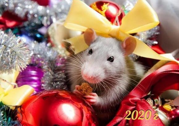 Вафельная картинка Новый год № 56. Купить вафельную или сахарную картинку Киев и Украина. Цена в интернет магазине Тортодел.