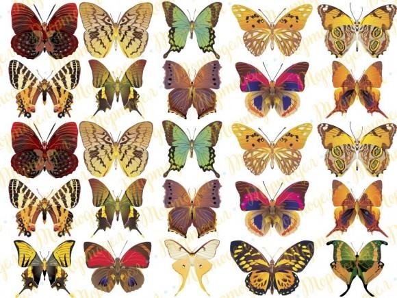 Вафельная картинка Бабочки №5. Купить вафельную или сахарную картинку Киев и Украина. Цена в интернет магазине Тортодел.
