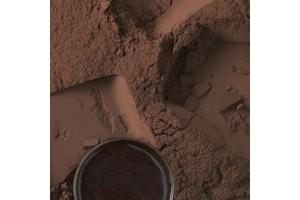 Какао-порошок алкализированный Cacao Barry Darko 10-12% - 100 г фасовка (DCP-10R315-790)