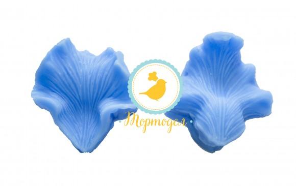 Вайнер Серединка орхидеи Катлея.Купить в Киеве,Харькове и Украине по лучшей цене в интернет магазине Тортодел