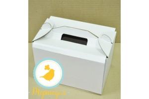 Коробка для кейк-попсов на 10 шт 242х145х175